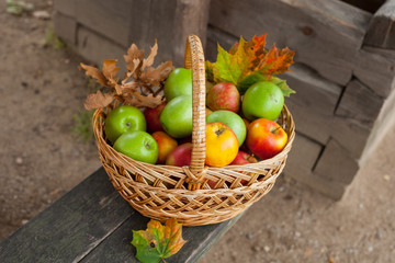 Basket with ripe apples