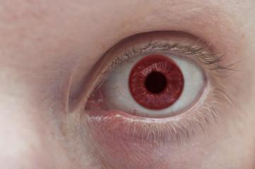 Beautiful red eye close up