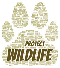 Protect wildlife word cloud shape