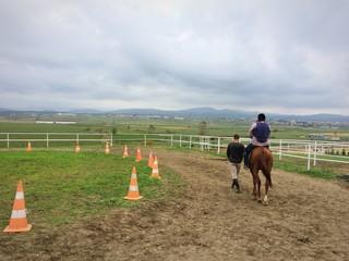At Çiftliği