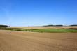 scenic farmland in autumn
