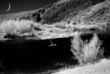 Fototapete Mond - Herbst - Andere