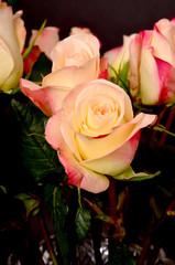 Rose Floral arrangement