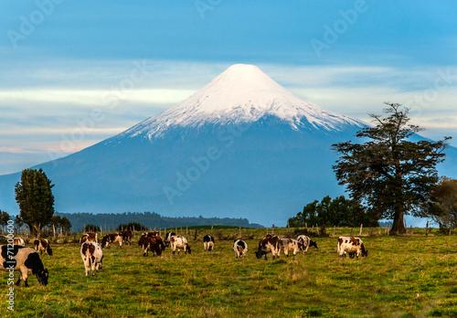 Idyllic landscape of Osorno Volcano, Lake Region, Chile - 71200600