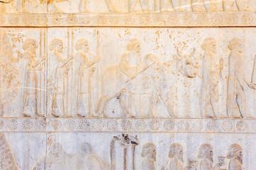 The bas-relief of Persepolis in north Shiraz, Iran