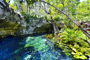 Beautiful Cenote