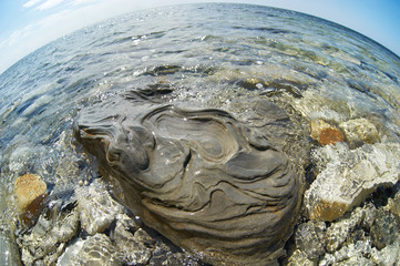 Beautiful surface of a stone in the sea