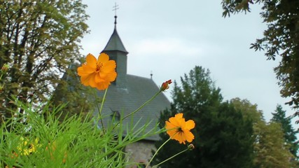 Yellow Daisy Flowers and the Church