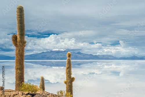 Leinwanddruck Bild Incahuasi island, Salar de Uyuni, Bolivia