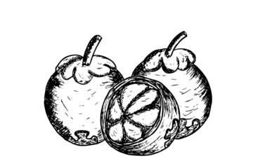 manggis, indonesian fruit