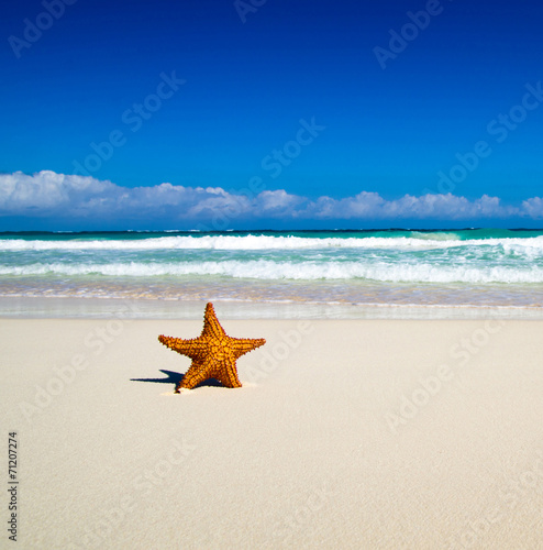 canvas print picture tropical sea