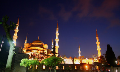 Blue Mosque Night Time
