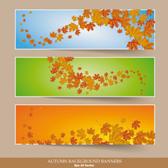Three Colored Autumn Banners Colored Background