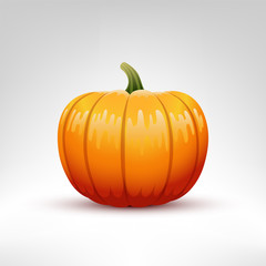 Pumpkin vector illustration isolated
