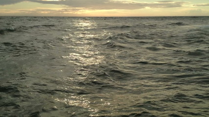 epic beautiful atmospheric and golden wild sea in 1080p
