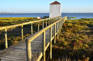 Observatorio de aves en la Bahía de Cádiz.España