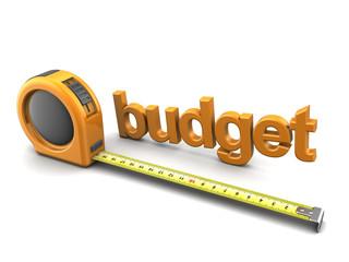 budget metrics
