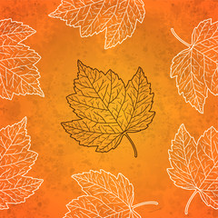 Pattern with autumn leaves in orange