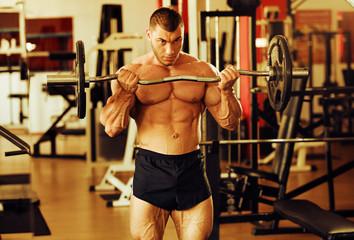 bodybuilder training gym, standing barbell curl