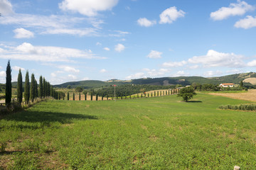 Maremma (Tuscany, Italy)