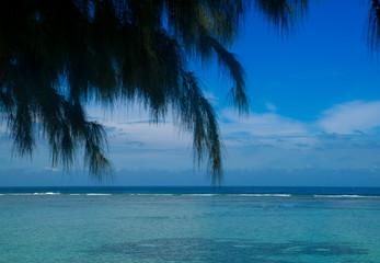 plage et océan indien