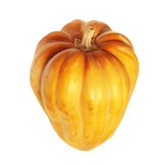Fresh orange pumpkin