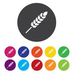 Gluten free sign icon. No gluten symbol