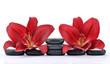 Czerwone lilie na kamieniach bazaltowych