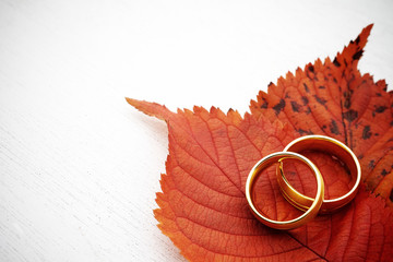Gold rings with leaves on white wood background