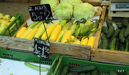 corn on the cob and corn sold in the fruit and vegetable market
