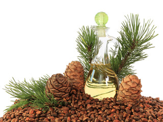 Cedar cones, nuts and cedar nut oil isolated on white background