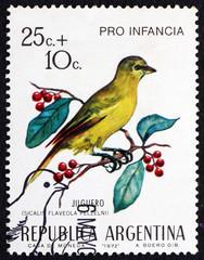 Postage stamp Argentina 1972 Saffron Finch, Bird
