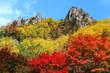 層雲峡の紅葉 - 71228005