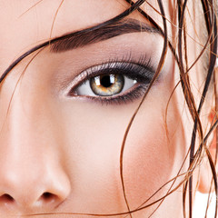 Closeup female eye with dark brown eye makeup