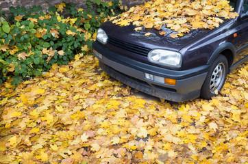 Autofahren im Herbst