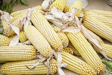 Corn in greengrocers