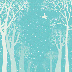 Background image of a winter forest