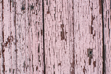 Old wooden planks painted with pink paint cracked by a rustic ba