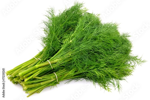 canvas print picture dill