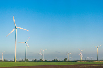 wind turbines in a field