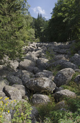 View of stone river in Vitisha mountain, Bulgaria