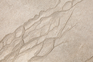 Macro photo with curved patterns on the wet coastal sand