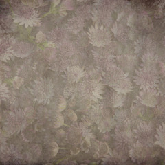 textured old paper background with Astrantia