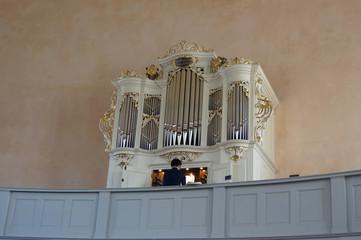 Grüneberg-Orgel in der Französischen Kirche