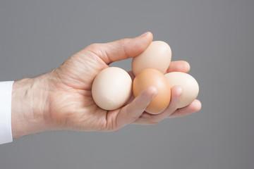Hand with four hens eggs.