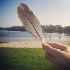 Piuma in mano con lago sullo sfondo