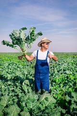 Farmer in the broccoli plant