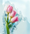 Tulips flowers painting