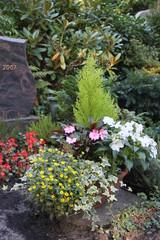 Gepflegtes Grab mit Pflanzschale