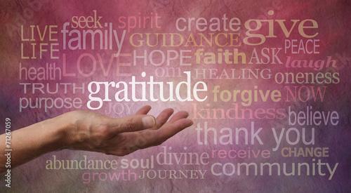Gratitude Attitude - 71267059